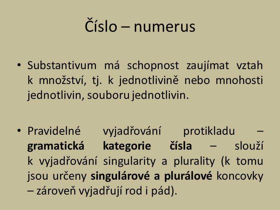 Číslo – numerus Substantivum má schopnost zaujímat vztah k množství, tj. k jednotlivině nebo mnohosti jednotlivin, souboru jednotlivin. Pravidelné vyj