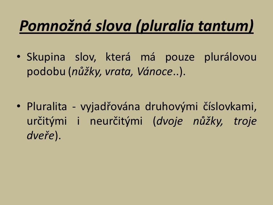 Pomnožná slova (pluralia tantum) Skupina slov, která má pouze plurálovou podobu (nůžky, vrata, Vánoce..). Pluralita - vyjadřována druhovými číslovkami