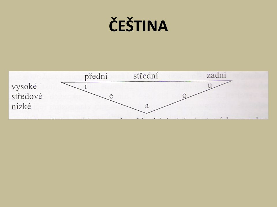 Slovesný rod Pasivní forma slovesa = opisné pasivum tvoří se pomocí tvarů slovesa být a tvarů tzv.