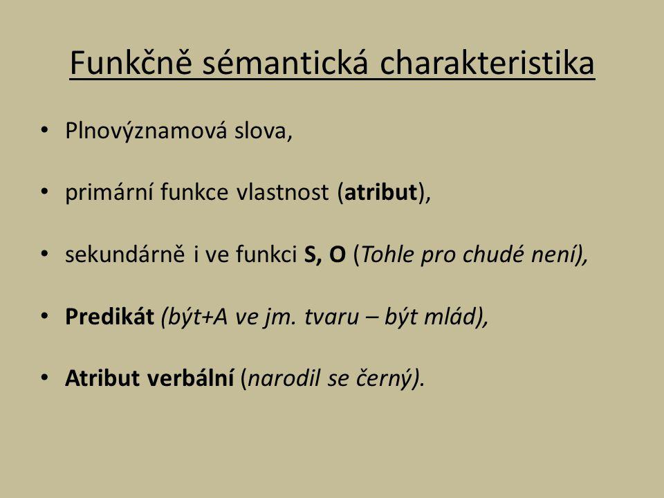 Funkčně sémantická charakteristika Plnovýznamová slova, primární funkce vlastnost (atribut), sekundárně i ve funkci S, O (Tohle pro chudé není), Predi