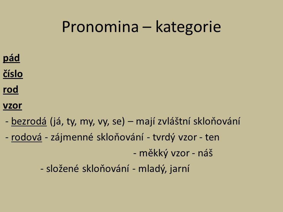 Pronomina – kategorie pád číslo rod vzor - bezrodá (já, ty, my, vy, se) – mají zvláštní skloňování - rodová - zájmenné skloňování - tvrdý vzor - ten -