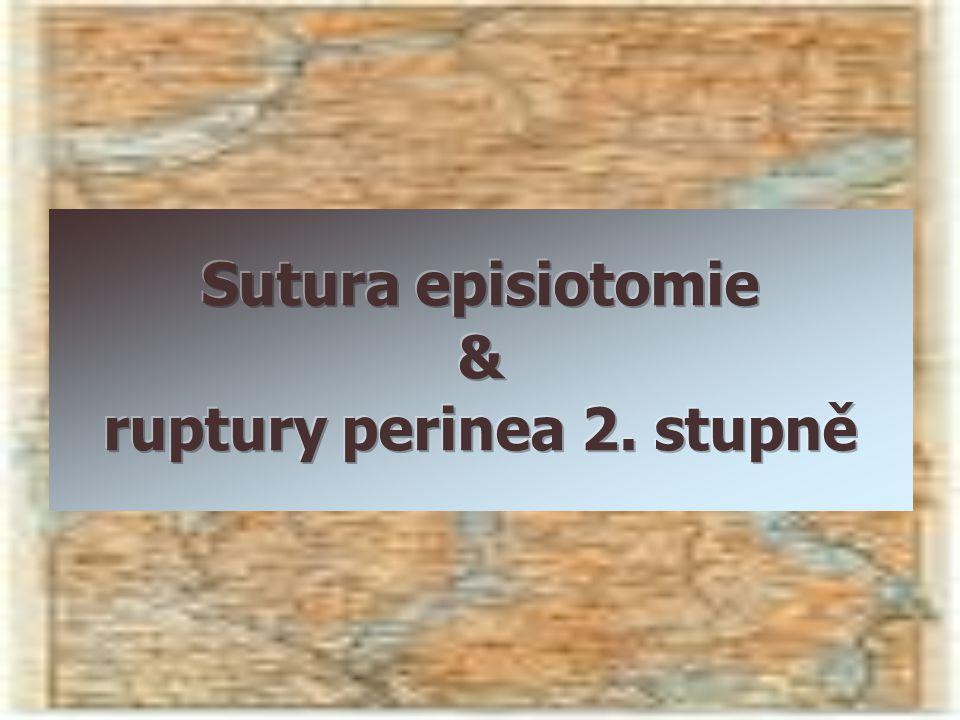  Pokračovací neprovlékaný steh  Materiál: 2-0 krátkodobě hydrolyticky vstřebatelné vlákno  Safil Quick, Vicryl RAPIDE, Chirlac rapid braided Kettle C 2002, 2007
