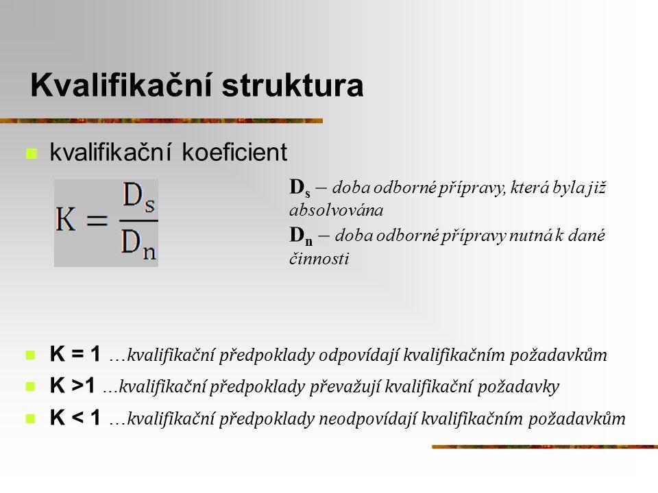 Kvalifikační struktura kvalifikační koeficient K = 1 … kvalifikační předpoklady odpovídají kvalifikačním požadavkům K >1... kvalifikační předpoklady p