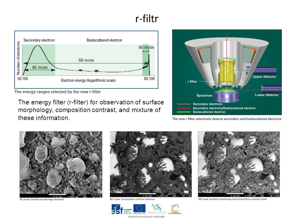 r-filtr The energy filter (r-filter) for observation of surface morphology, composition contrast, and mixture of these information.