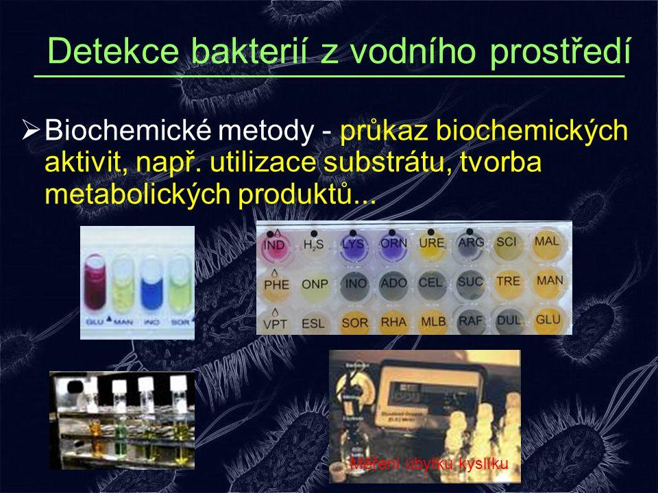  Biochemické metody - průkaz biochemických aktivit, např. utilizace substrátu, tvorba metabolických produktů... Detekce bakterií z vodního prostředí