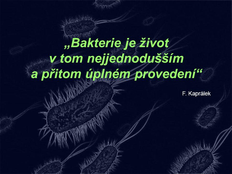 """""""Bakterie je život v tom nejjednodušším a přitom úplném provedení"""" F. Kaprálek"""