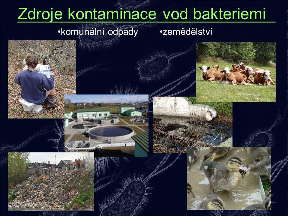 Zdroje kontaminace vod bakteriemi zemědělstvíkomunální odpady