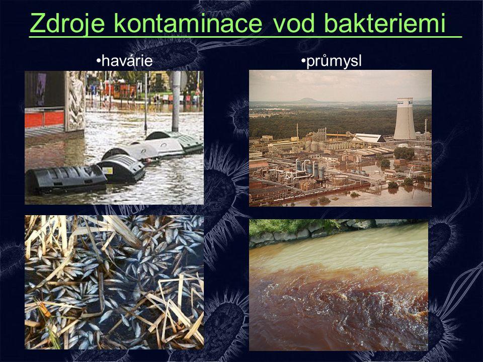 Zdroje kontaminace vod bakteriemi havárieprůmysl