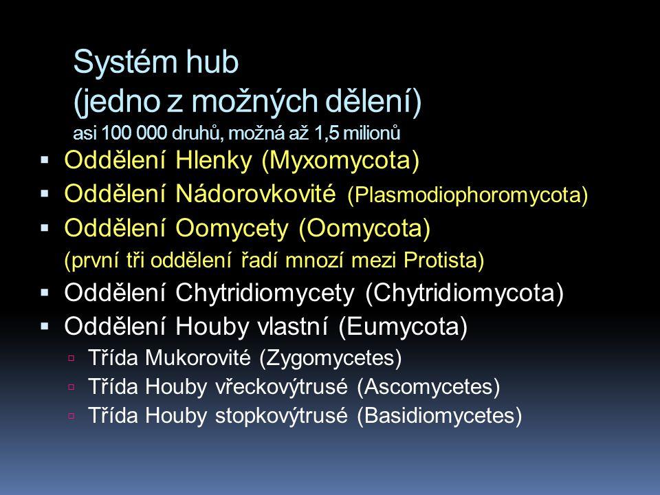 Systém hub (jedno z možných dělení) asi 100 000 druhů, možná až 1,5 milionů  Oddělení Hlenky (Myxomycota)  Oddělení Nádorovkovité (Plasmodiophoromyc