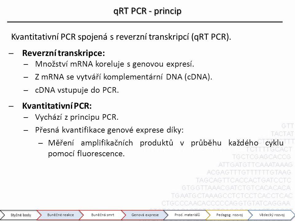 qRT PCR - princip Kvantitativní PCR spojená s reverzní transkripcí (qRT PCR). ̶Reverzní transkripce: ̶Množství mRNA koreluje s genovou expresí. ̶Z mRN