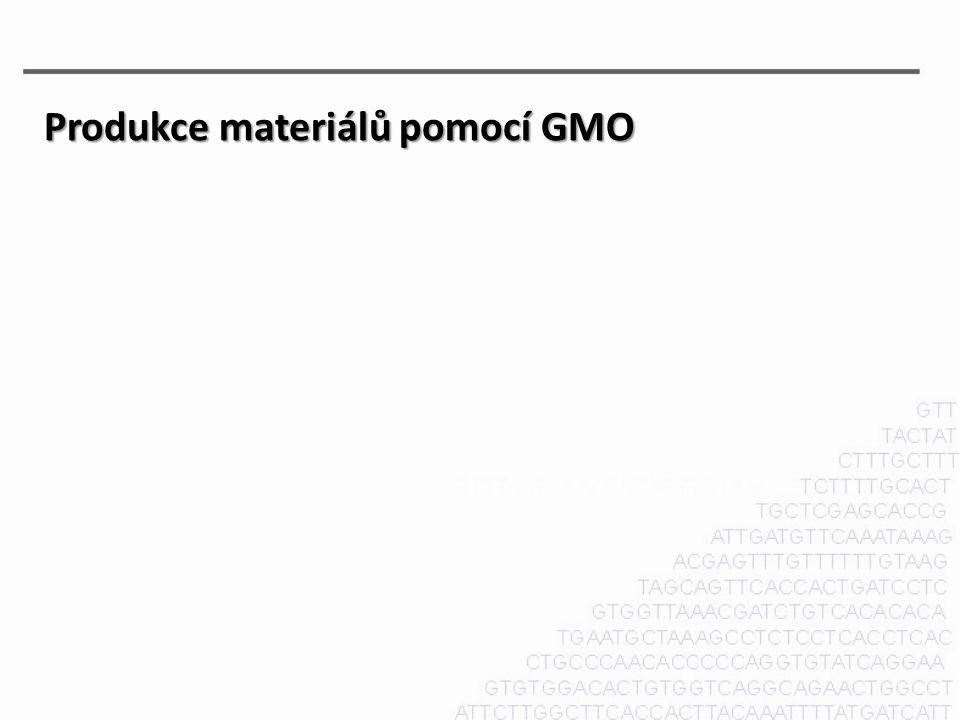 Produkce materiálů pomocí GMO