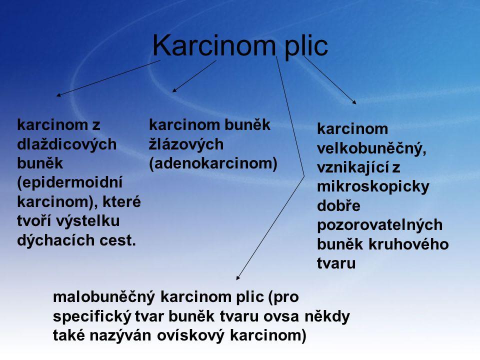 Karcinom plic karcinom z dlaždicových buněk (epidermoidní karcinom), které tvoří výstelku dýchacích cest. karcinom buněk žlázových (adenokarcinom) kar