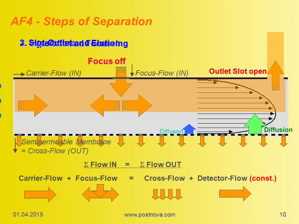 AF4 - Steps of Separation 1. Injection and Focussing 2. Separation and Elution Focus-Flow (IN)Carrier-Flow (IN) Focus off Diffusion Semipermeable Memb