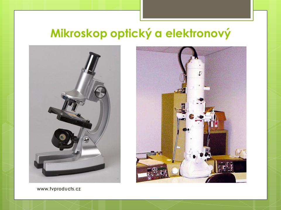 Mikroskop optický a elektronový  Elektronový www.tvproducts.cz