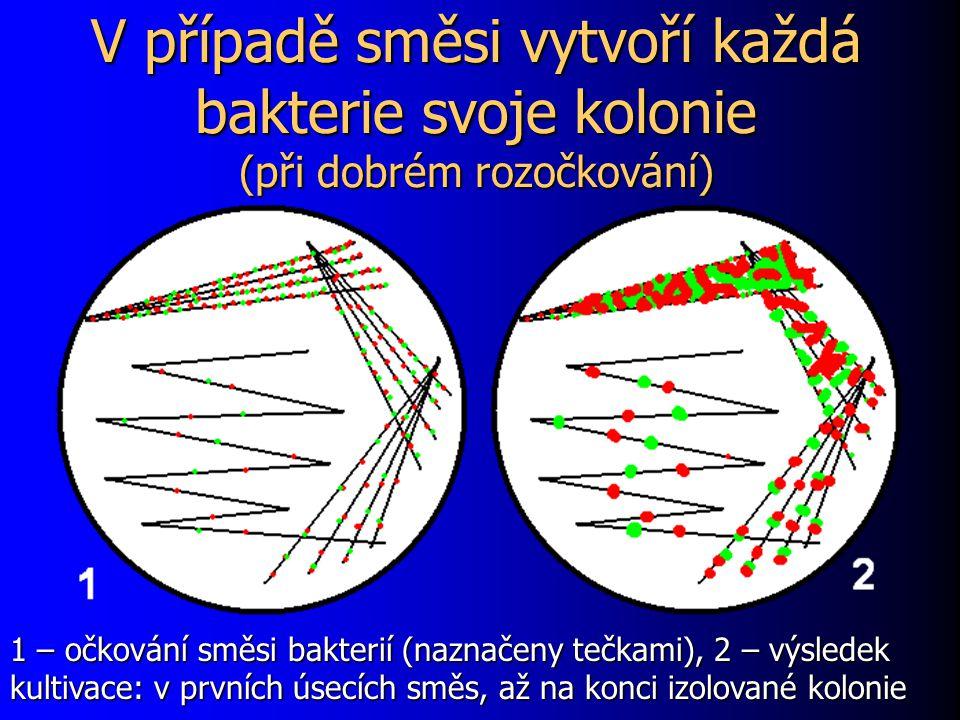 V případě směsi vytvoří každá bakterie svoje kolonie (při dobrém rozočkování) 1 – očkování směsi bakterií (naznačeny tečkami), 2 – výsledek kultivace: