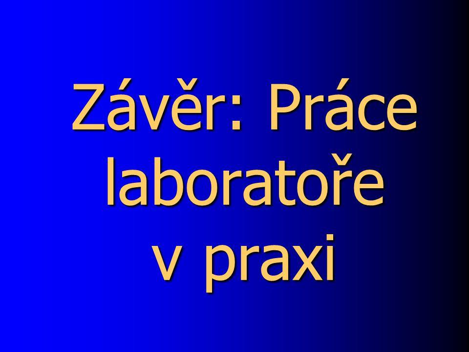 Závěr: Práce laboratoře v praxi