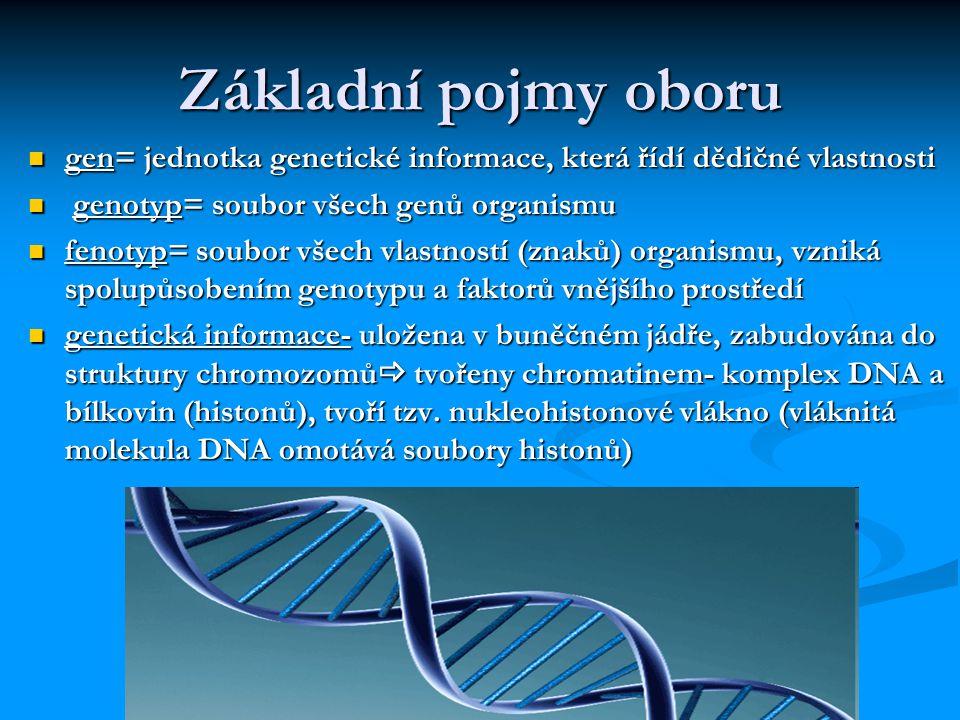 Etické a právní aspekty genetiky Gen-etika každé odvětví má své etické a právní aspekty patří k oborům se spíše složitějšími etickými otázkami Eugenika věda, která se snaží zlepšit skladbu lidské populace tzv.