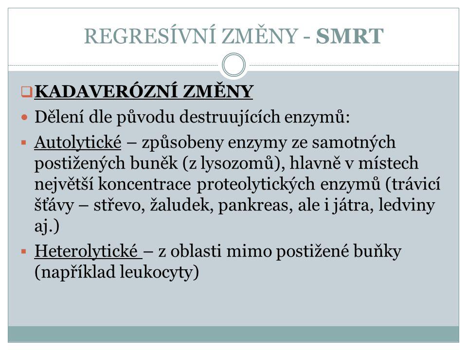 REGRESÍVNÍ ZMĚNY - SMRT  KADAVERÓZNÍ ZMĚNY Dělení dle původu destruujících enzymů:  Autolytické – způsobeny enzymy ze samotných postižených buněk (z