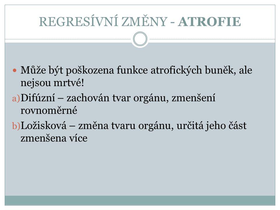 REGRESÍVNÍ ZMĚNY - ATROFIE Může být poškozena funkce atrofických buněk, ale nejsou mrtvé! a) Difúzní – zachován tvar orgánu, zmenšení rovnoměrné b) Lo