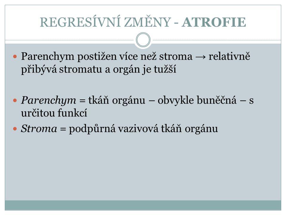 REGRESÍVNÍ ZMĚNY - ATROFIE Parenchym postižen více než stroma → relativně přibývá stromatu a orgán je tužší Parenchym = tkáň orgánu – obvykle buněčná