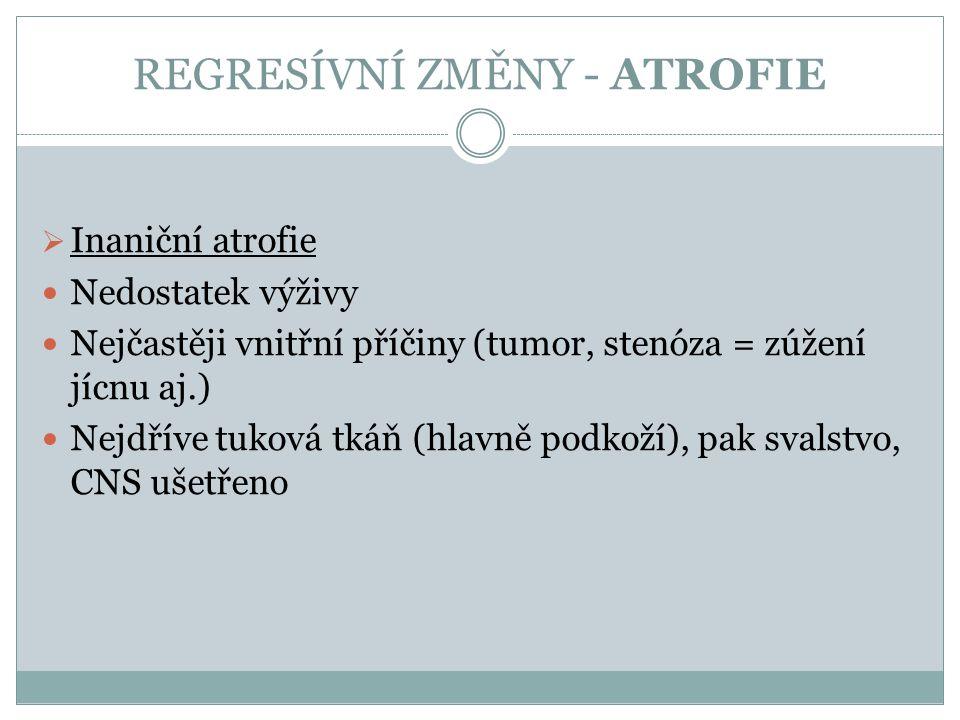 REGRESÍVNÍ ZMĚNY - ATROFIE  Inaniční atrofie Nedostatek výživy Nejčastěji vnitřní příčiny (tumor, stenóza = zúžení jícnu aj.) Nejdříve tuková tkáň (h