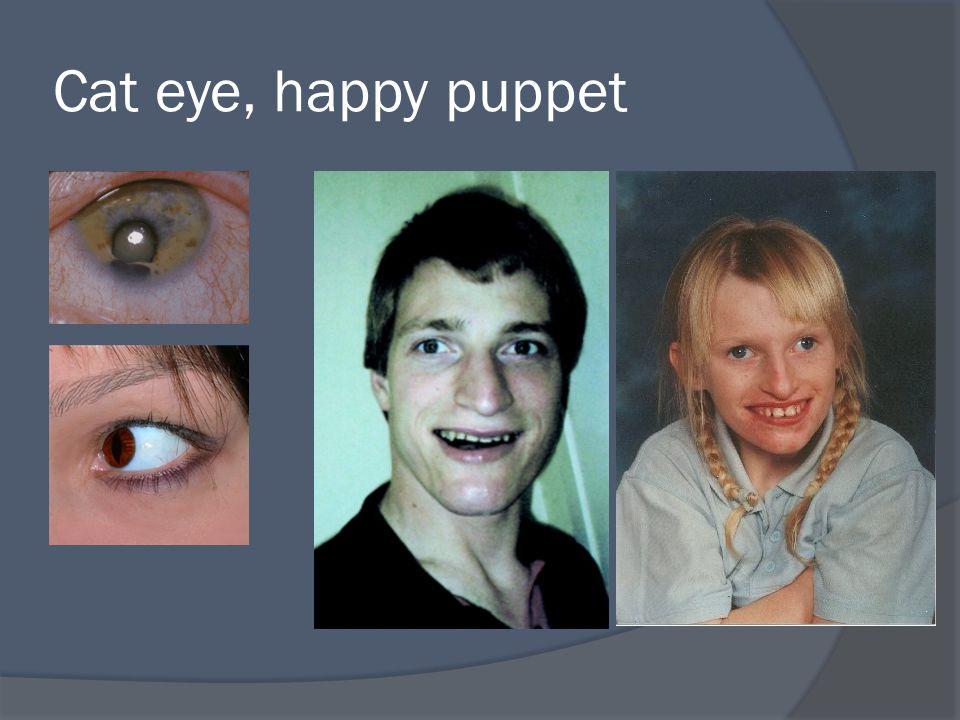 Cat eye, happy puppet