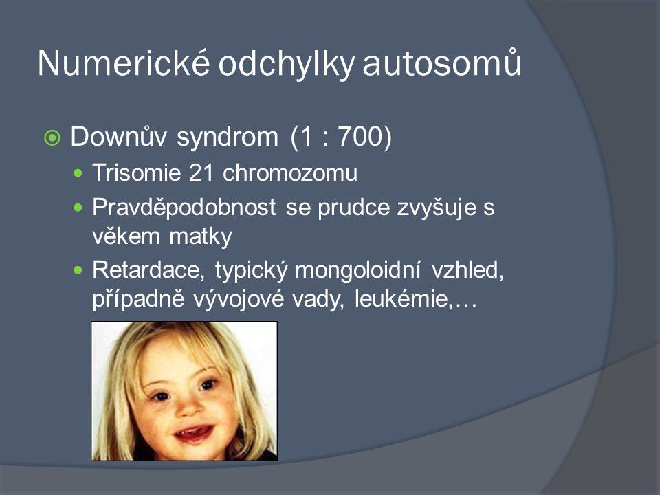 Numerické odchylky autosomů  Downův syndrom (1 : 700) Trisomie 21 chromozomu Pravděpodobnost se prudce zvyšuje s věkem matky Retardace, typický mongo