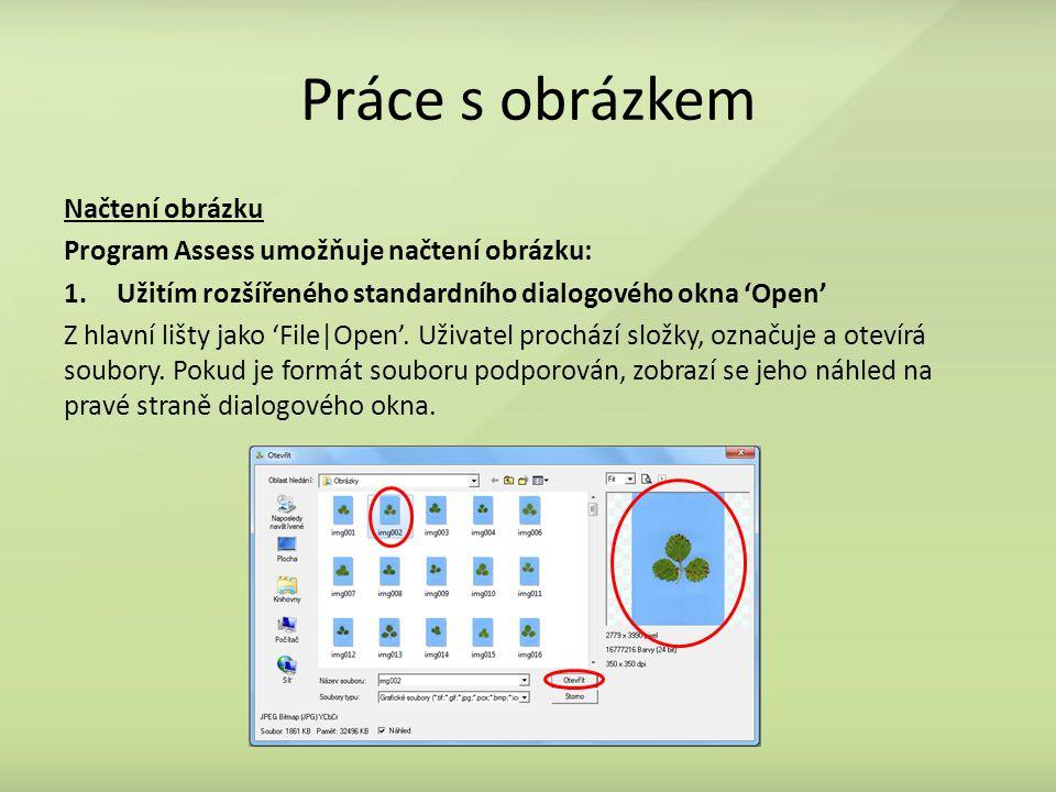 Práce s obrázkem Načtení obrázku Program Assess umožňuje načtení obrázku: 1.Užitím rozšířeného standardního dialogového okna 'Open' Z hlavní lišty jako 'File|Open'.