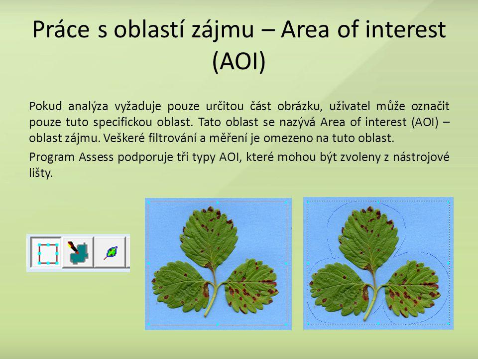 Práce s oblastí zájmu – Area of interest (AOI) Pokud analýza vyžaduje pouze určitou část obrázku, uživatel může označit pouze tuto specifickou oblast.