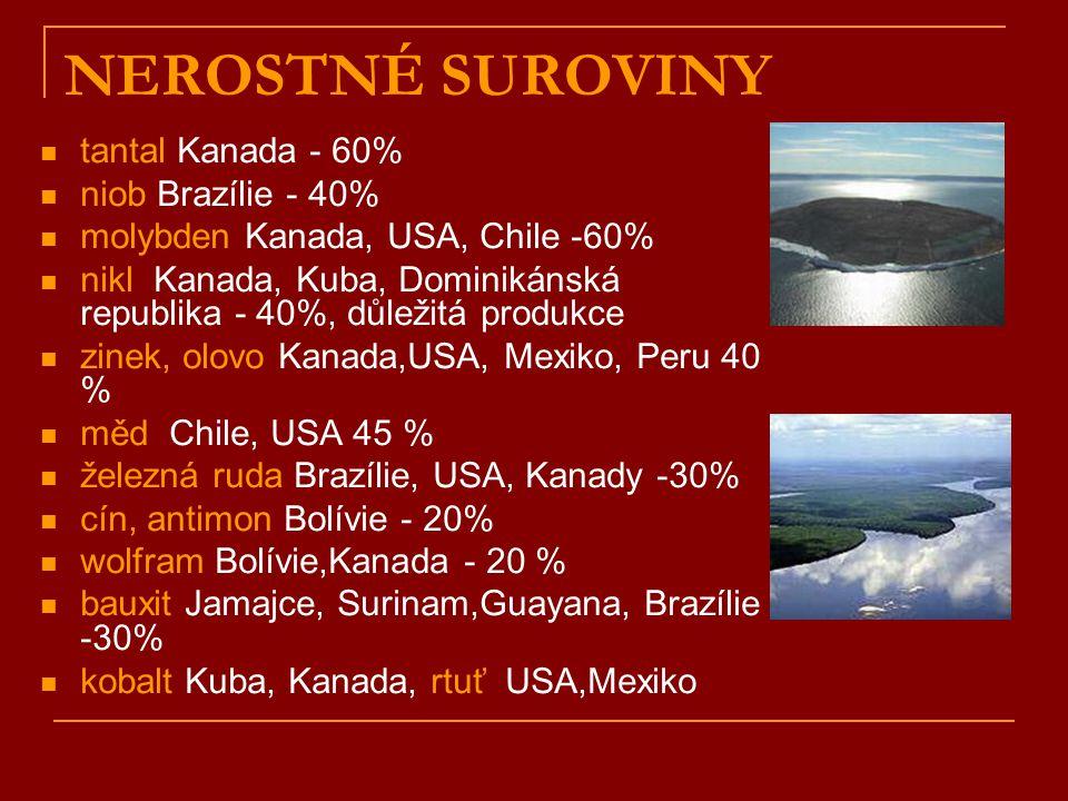 NEROSTNÉ SUROVINY tantal Kanada - 60% niob Brazílie - 40% molybden Kanada, USA, Chile -60% nikl Kanada, Kuba, Dominikánská republika - 40%, důležitá produkce zinek, olovo Kanada,USA, Mexiko, Peru 40 % měd Chile, USA 45 % železná ruda Brazílie, USA, Kanady -30% cín, antimon Bolívie - 20% wolfram Bolívie,Kanada - 20 % bauxit Jamajce, Surinam,Guayana, Brazílie -30% kobalt Kuba, Kanada, rtuť USA,Mexiko