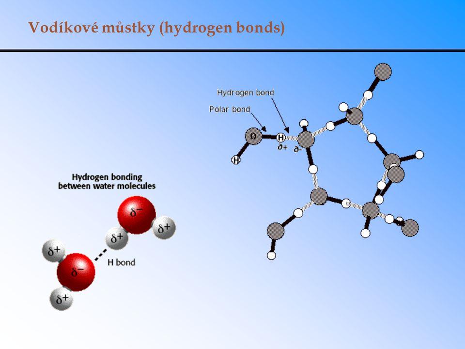 Vodíkové můstky (hydrogen bonds)
