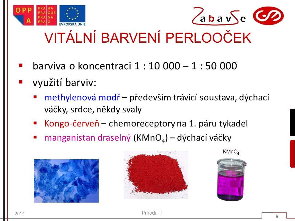 VITÁLNÍ BARVENÍ PERLOOČEK  barviva o koncentraci 1 : 10 000 – 1 : 50 000  využití barviv:  methylenová modř – především trávicí soustava, dýchací v