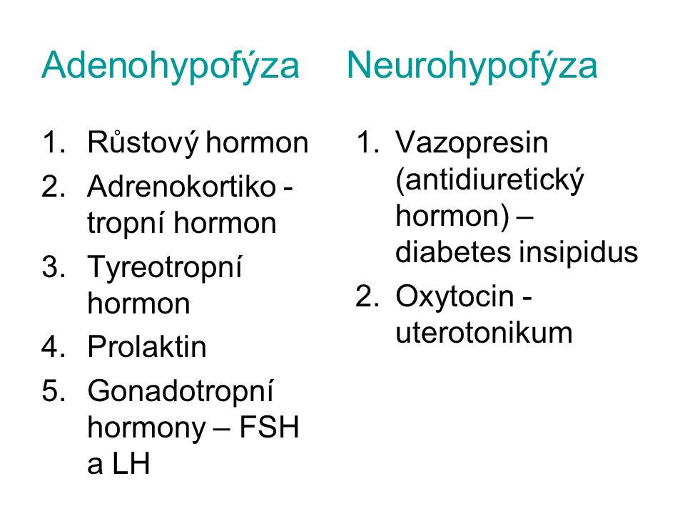 Adenohypofýza Neurohypofýza 1.Růstový hormon 2.Adrenokortiko - tropní hormon 3.Tyreotropní hormon 4.Prolaktin 5.Gonadotropní hormony – FSH a LH 1.Vazo