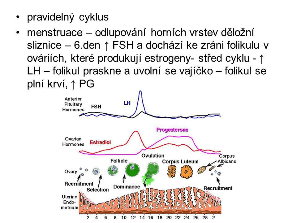 pravidelný cyklus menstruace – odlupování horních vrstev děložní sliznice – 6.den ↑ FSH a dochází ke zráni folikulu v ováriích, které produkují estrog