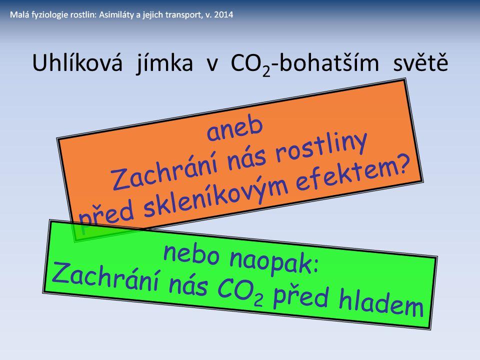 Uhlíková jímka v CO 2 -bohatším světě aneb Zachrání nás rostliny před skleníkovým efektem? nebo naopak: Zachrání nás CO 2 před hladem