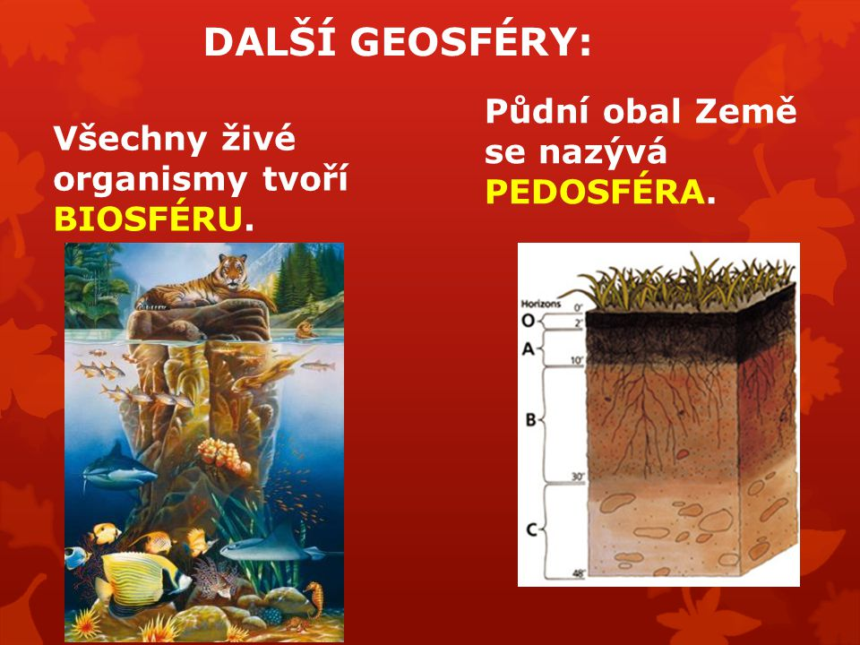 DALŠÍ GEOSFÉRY: Všechny živé organismy tvoří BIOSFÉRU. Půdní obal Země se nazývá PEDOSFÉRA.