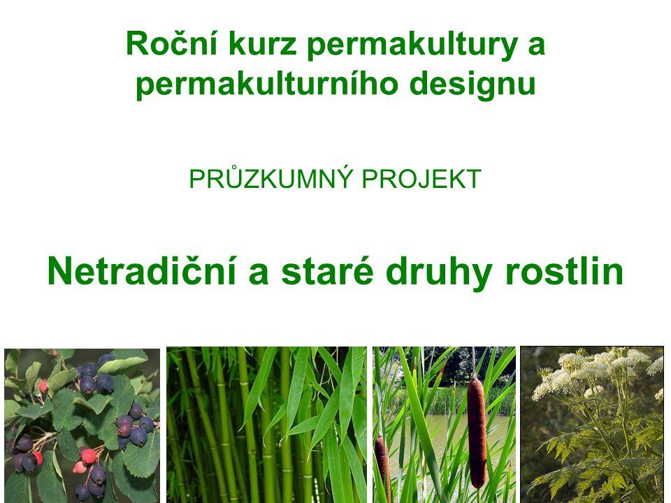 Roční kurz permakultury a permakulturního designu PRŮZKUMNÝ PROJEKT Netradiční a staré druhy rostlin