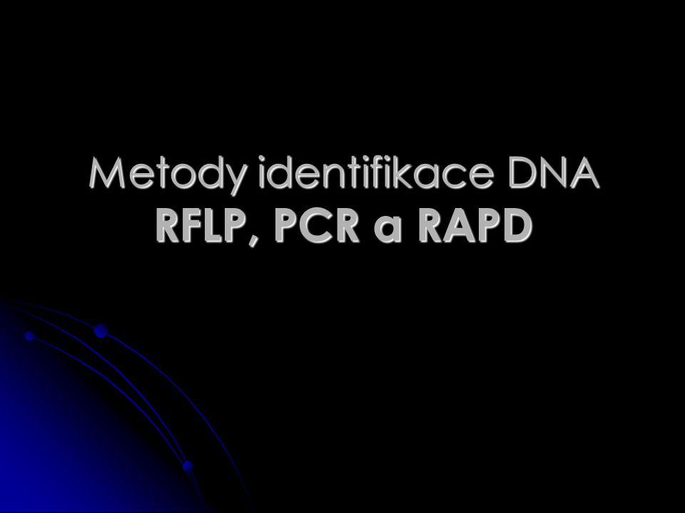 Metody identifikace DNA RFLP, PCR a RAPD