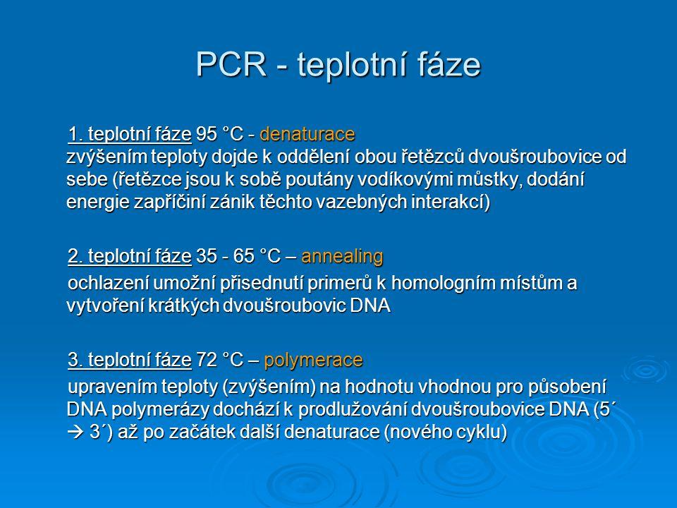 PCR - teplotní fáze 1. teplotní fáze 95 °C - denaturace zvýšením teploty dojde k oddělení obou řetězců dvoušroubovice od sebe (řetězce jsou k sobě pou