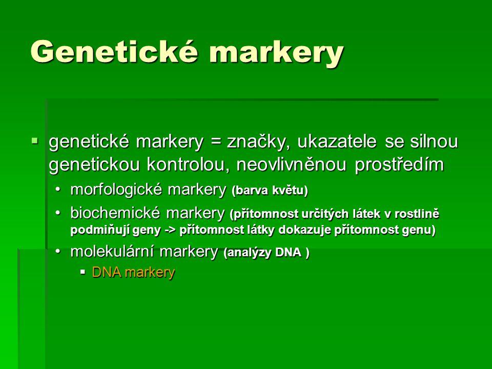 Genetické markery  genetické markery = značky, ukazatele se silnou genetickou kontrolou, neovlivněnou prostředím morfologické markery (barva květu)mo