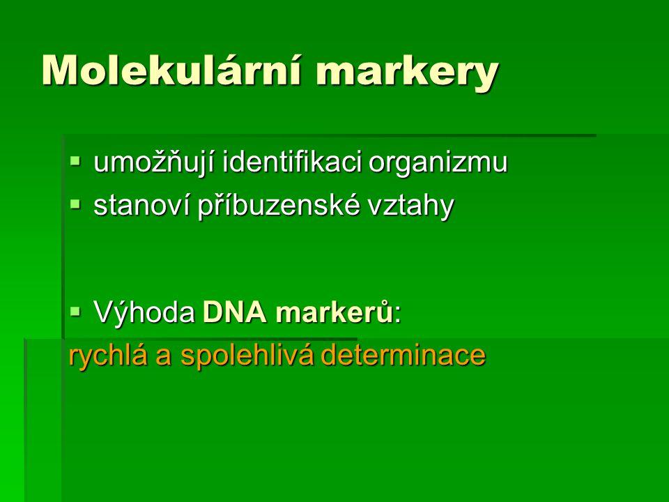Molekulární markery  umožňují identifikaci organizmu  stanoví příbuzenské vztahy  Výhoda DNA markerů: rychlá a spolehlivá determinace