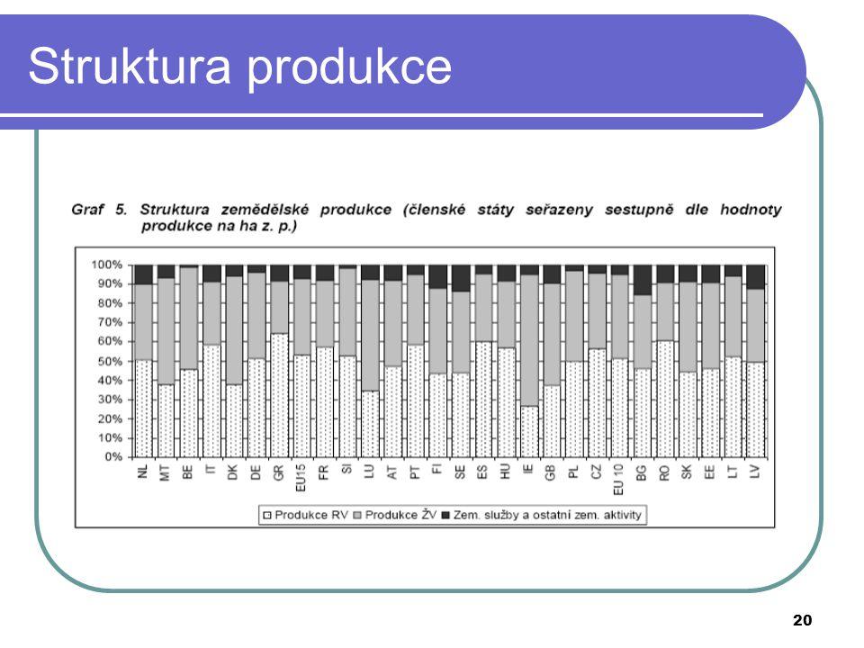 20 Struktura produkce