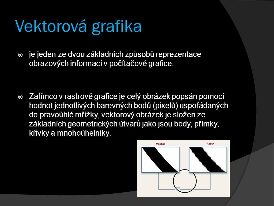 Vektorová grafika  je jeden ze dvou základních způsobů reprezentace obrazových informací v počítačové grafice.  Zatímco v rastrové grafice je celý o