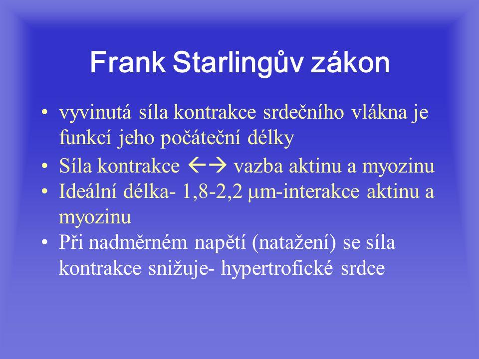 Frank Starlingův zákon vyvinutá síla kontrakce srdečního vlákna je funkcí jeho počáteční délky Síla kontrakce  vazba aktinu a myozinu Ideální délka- 1,8-2,2  m-interakce aktinu a myozinu Při nadměrném napětí (natažení) se síla kontrakce snižuje- hypertrofické srdce