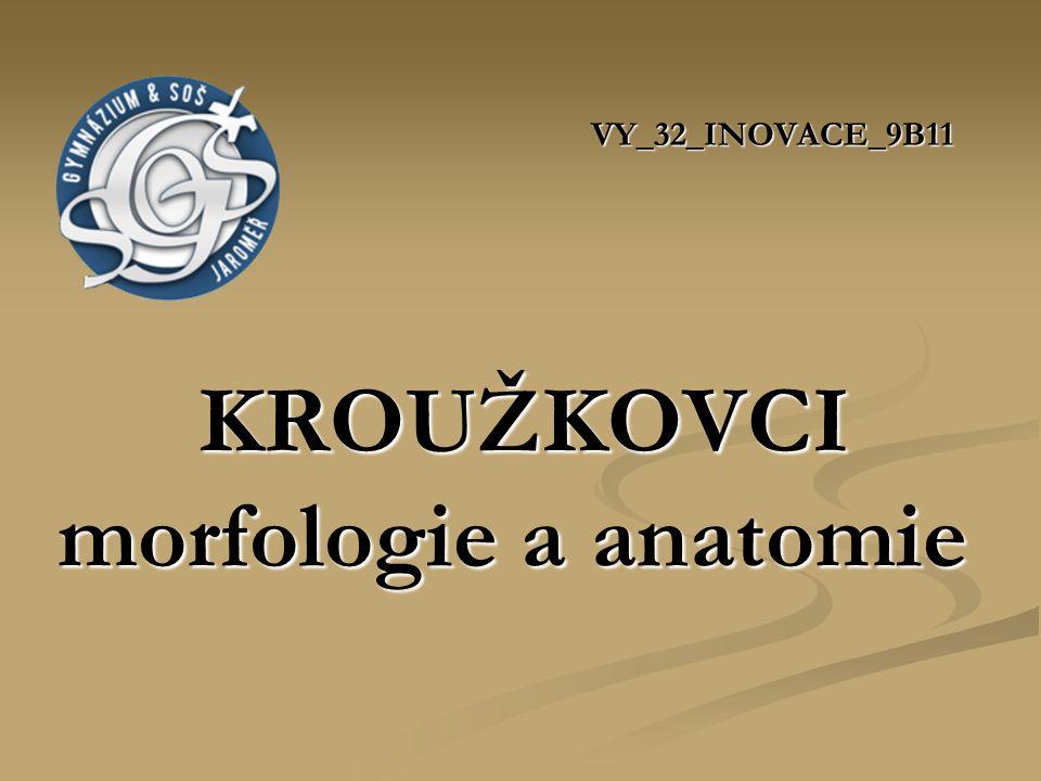VY_32_INOVACE_9B11 KROUŽKOVCI morfologie a anatomie