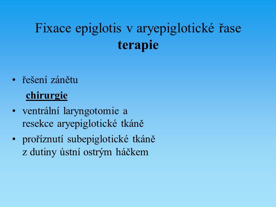 Fixace epiglotis v aryepiglotické řase terapie řešení zánětu chirurgie ventrální laryngotomie a resekce aryepiglotické tkáně proříznutí subepiglotické
