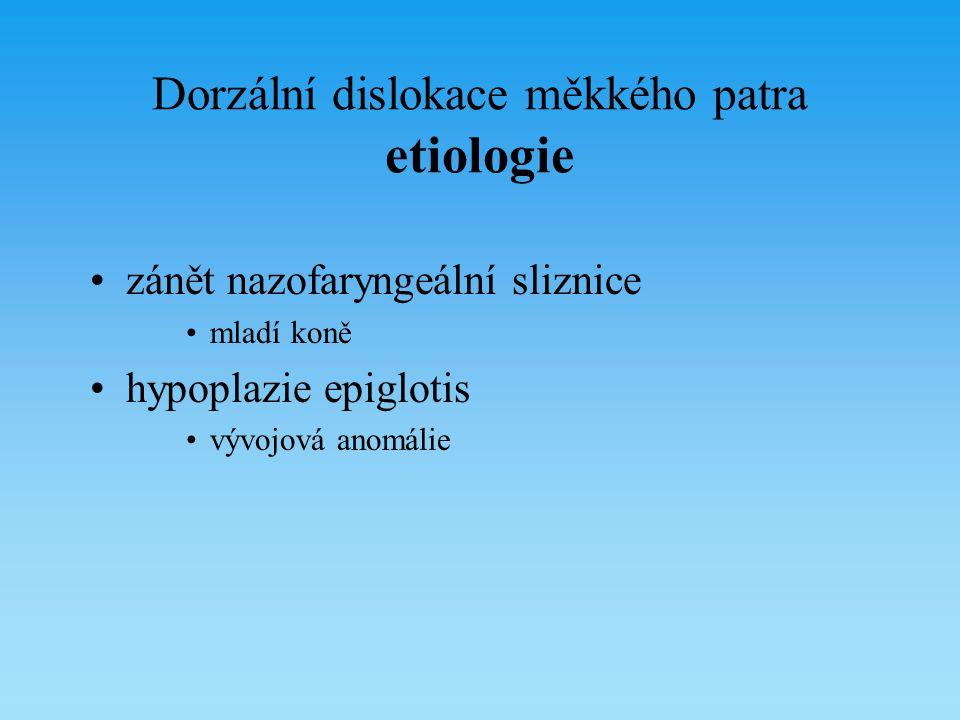 Dorzální dislokace měkkého patra etiologie zánět nazofaryngeální sliznice mladí koně hypoplazie epiglotis vývojová anomálie