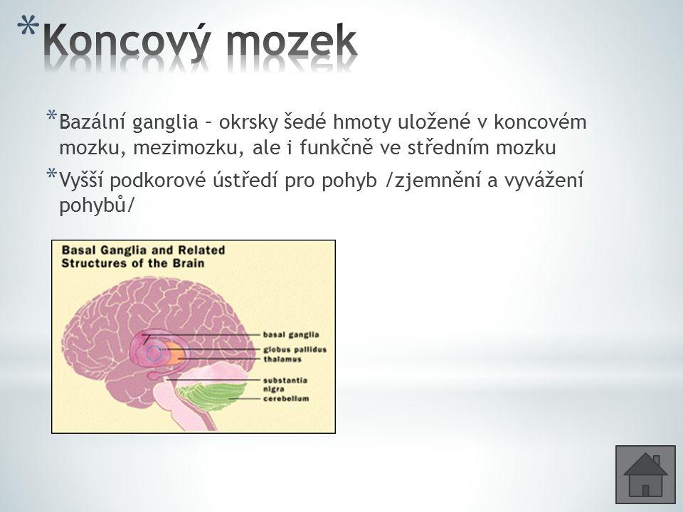 * Bazální ganglia – okrsky šedé hmoty uložené v koncovém mozku, mezimozku, ale i funkčně ve středním mozku * Vyšší podkorové ústředí pro pohyb /zjemně
