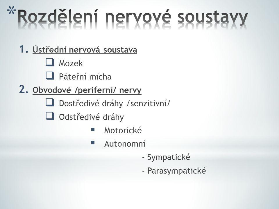 1. Ústřední nervová soustava  Mozek  Páteřní mícha 2. Obvodové /periferní/ nervy  Dostředivé dráhy /senzitivní/  Odstředivé dráhy  Motorické  Au
