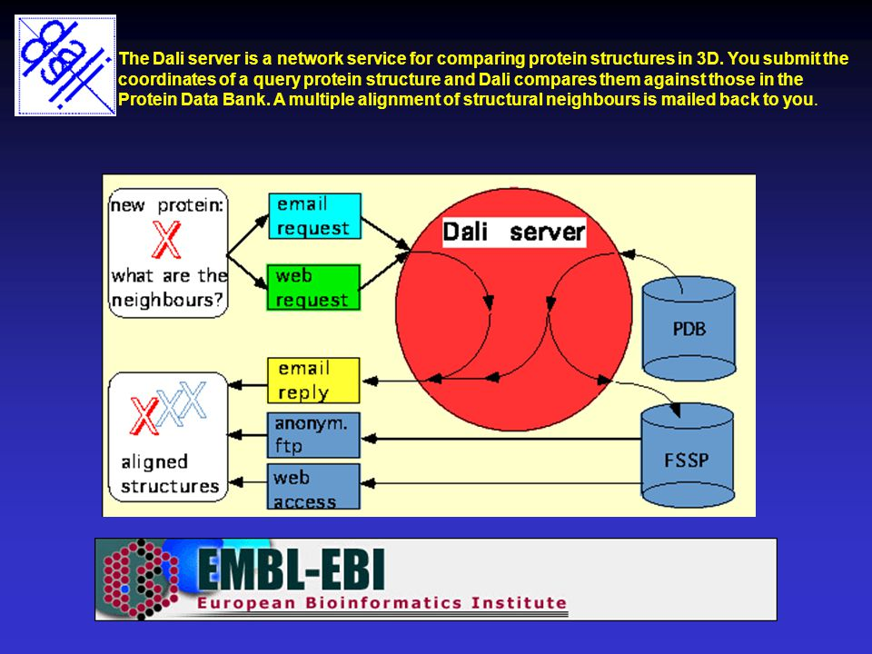 The Dali server is a network service for comparing protein structures in 3D. You submit the coordinates of a query protein structure and Dali compares